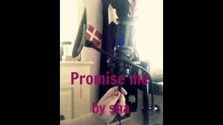 Promise me by sha (Dead by April cover Acoustic)