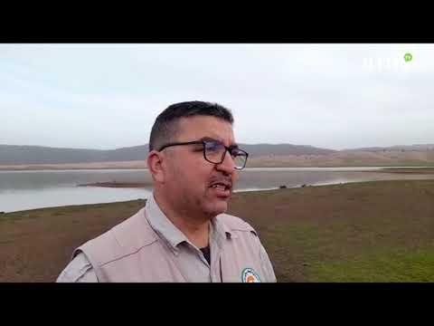 Video : Le parc national d'Ifrane et GREPOM procèdent au recensement hivernal des oiseaux d'eau
