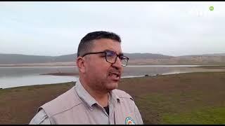 Le parc national d'Ifrane et GREPOM procèdent au recensement hivernal des oiseaux d'eau