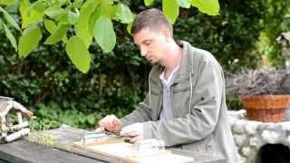 Diddley-bow építése - Tavaszi szél vizet áraszt / Arató Gergely