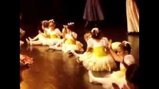 Ballet Cristina Helena O Quebra Nozes-Festival 2013