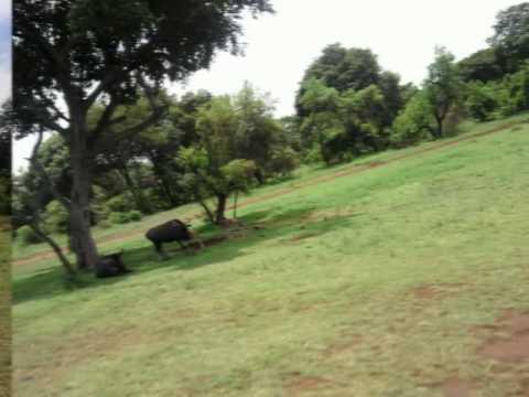 Africa december 2009