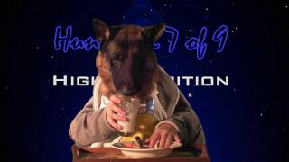 Johnny Cash - Dirty Old Egg Suckin' Dog 1080p