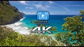90 Second Peaceful Relaxation | a 4K Nature Relaxation™ Video