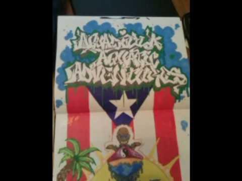 www.aguadillaaquaticadventures.com