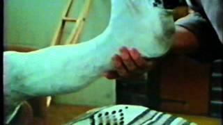 seventies llwc plaster cast