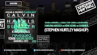 Hakuna Matata  vs King Kong vs Summer (Stephen Hurtley Edit)