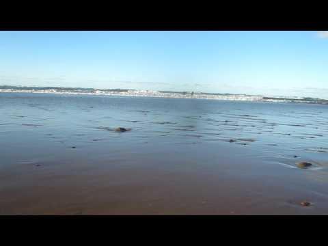 Atlantic ocean beach, Sidi Ifni / Morocco / Africa