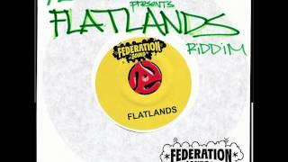 DOGGY-MR. VEGAS Feat. NATALIE STORM(FLATLANDS RIDDIM PRODUCE BY MAX GLAZER FOR FEDERATION SOUND)