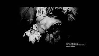 Antony Hagerty feat. The Roma Sinfonietta Orchestra - Nessun Dorma