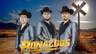 Grupo Los Ronaldos - El varon de la noria @A casi nada de serlo todo 2016