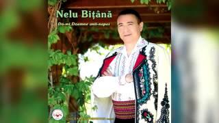 Nelu Bitana - Murgu-i trist lang-o uluca (Official Audio).