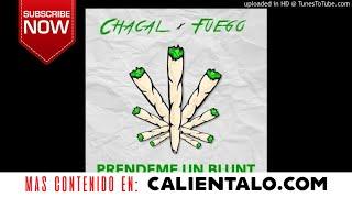El Chacal ft. Fuego - Prendeme Un Blunt ( Trap 2017 )