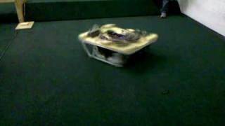 Crevolution 2851 - Cerberus 2010 - Spin Attack