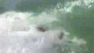 Andorinha do Mar - 02/04/2007 - Marcelo Cabelo