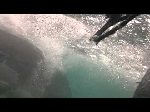 Shark Cage Dive, Gansbaai, South Africa – 10-12-2011