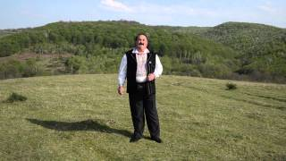 Ionică Ivan - Păcurari cu oi puţine