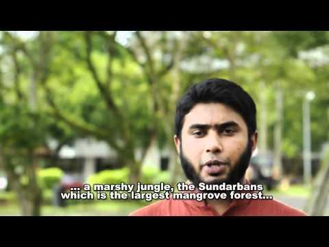 ICFUTM 2011 Teaser Bangladesh
