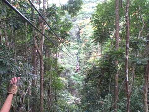 Rainforest Canopy Tour Puerto Rico