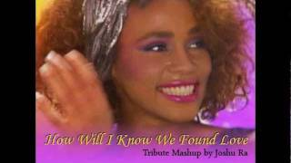 How Will I Know We Found Love - Whitney Houston Tribute Mashup