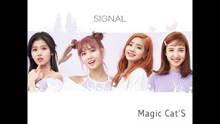 ( Twice ) - { Signal } Cover by Band 《 Magic Cats 》