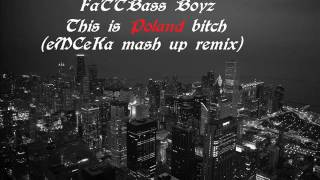 FaTTBass Boyz - This is poland bitch(eMCeKa mash up remix)