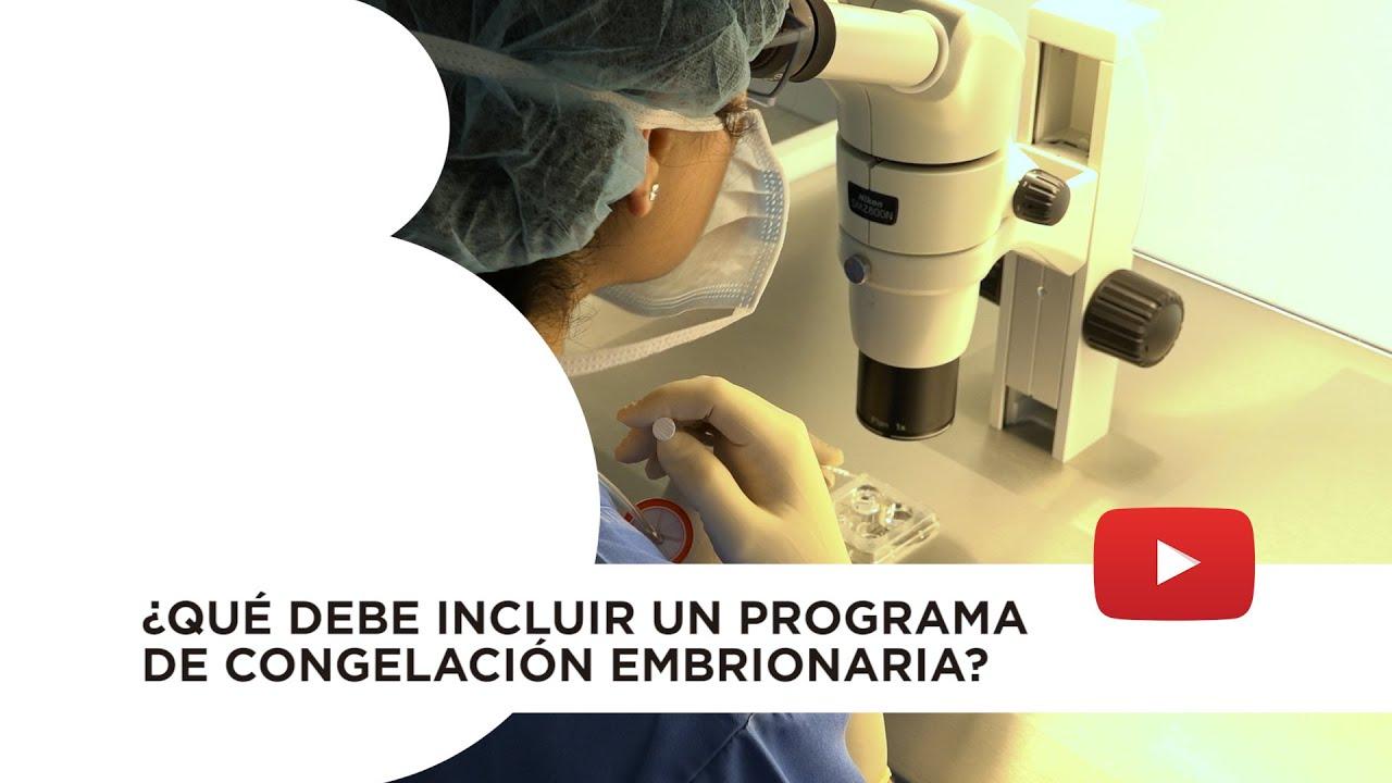 Vitrificación embriones. Tipos de embriones