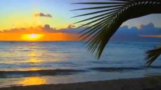 Bob Marley((remix))
