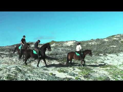 Horse Riding South Africa – Horseback riding in Gansbaai