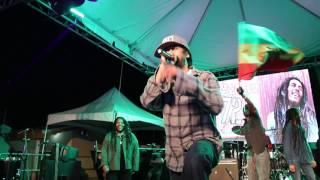 Damian Marley - Roar Fi A Cause (Live at Bob Marley Birthday Bash)