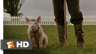 That'll Do Pig - Babe (9/9) Movie CLIP (1995) HD