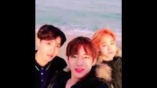 Cute BTS feat. BEACH ...