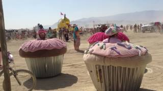 Don and Mike's Cupcakes at Burning Man - 2013