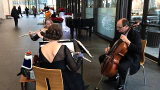Star Wars Imperial March, Windsong Classical Trio