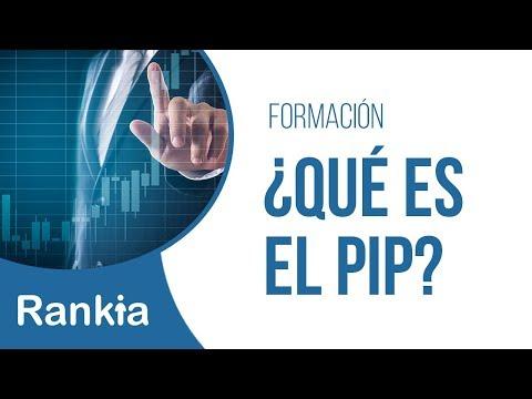 Melchor Armenta, Fundador de Fxmel, explica en este video lo que es el pip: es el precio dividido entre diezmil, pero no en todos los pares es igual.