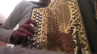 As pombinhas da catrina na concertina