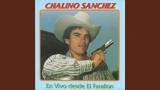 El Toro Moro (Live Track)