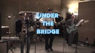 The Blow Monkeys @ Under The Bridge