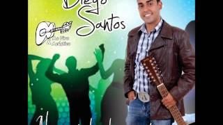 No Estilo De Luta - Diego Santos (jab, direto) CARNAVAL 2014