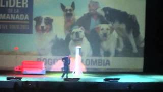 Cesar Millan show Bogota