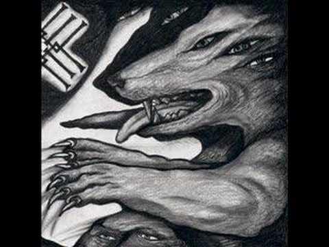 metsatoll-veelind-evilkaru