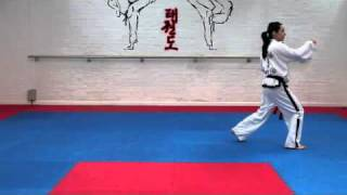 Chon Ji Tul and basic movements for grading to 8th kup