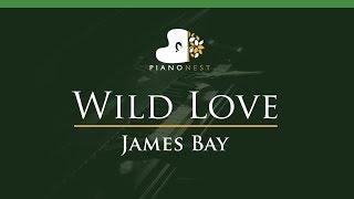James Bay - Wild Love - LOWER Key (Piano Karaoke / Sing Along)