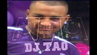 dj tao mix regaeton