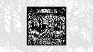 Blackbriar - Fractured Fairytales EP Announcement