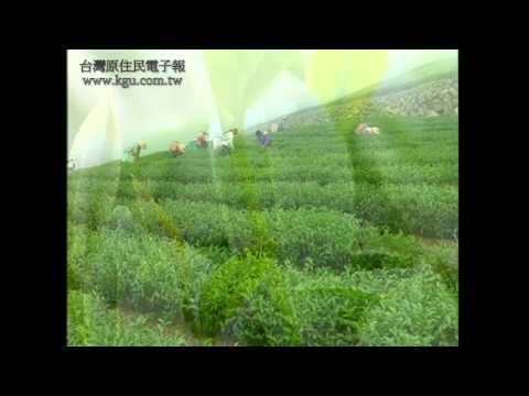 台灣原住民鄒族 - YouTube