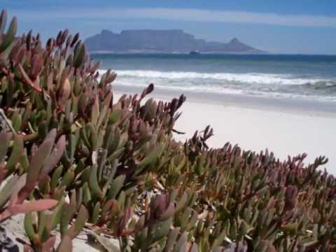 Imagenes de Cape Town – South Africa