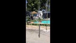 Brasileira na piscina feira são Mateus