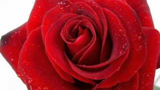 Глория   Вярвам в любовта  Високо Качество