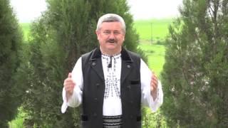 NELU PĂUCEAN - SUS PE MUNTELE CINDREL